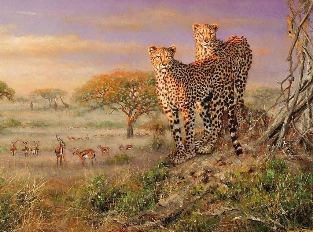 cuadros-con-animales-salvajes