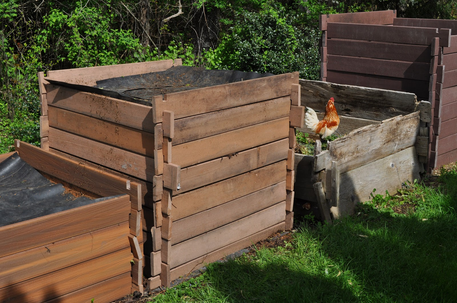 Shed Plan Software: Easy Compost Bin Plans Wooden Plans