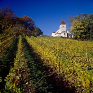 Jecreemacave cadeau box vin abonnement vin depuis 2011
