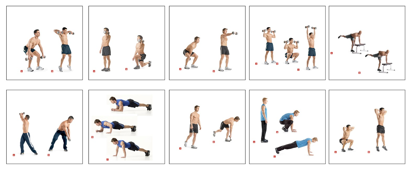 dumbbell workout plan for men | Workout | tomuch.us