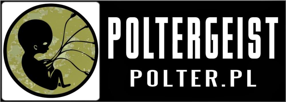 www.wfrp.polter.pl