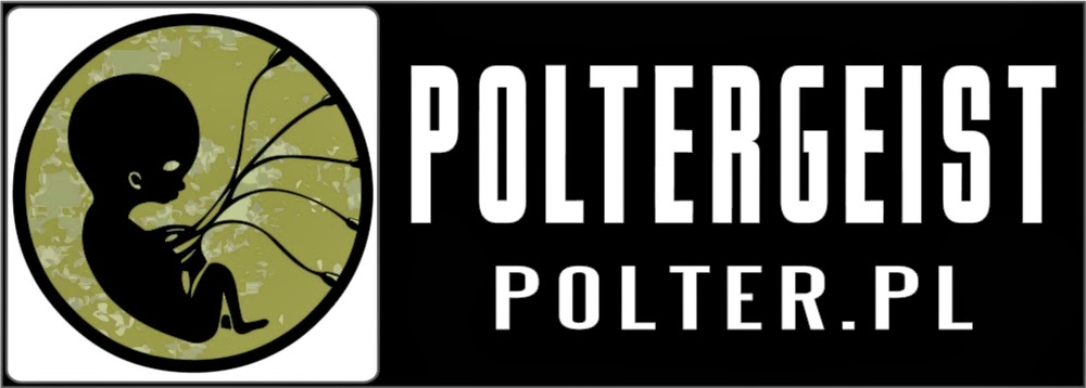 http://www.wfrp.polter.pl/
