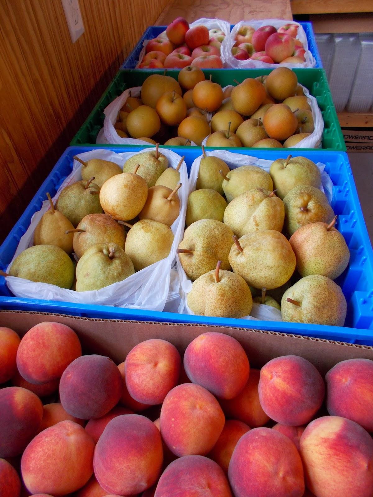 peach orchard asian personals 021513_corinth e-edition near the peach orchard manning & napier wrldoppa 820 -002 matthews asian china d 2403 +004 india d 1747 -010 merger merger.