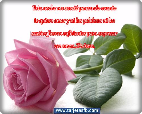 : Tarjetas de rosas con frases de amor para etiquetar en tu muro