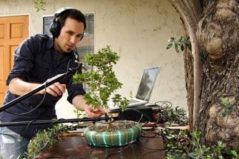 Inilah Alat Musik Dari Tumbuhan [ www.BlogApaAja.com ]