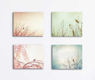 Pastel Nursery Canvas Wall Art - birds pale light blue green pink peach cream babys room decor four photographs gallery wraps nature prints