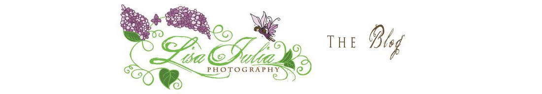 Virginia Photographer Lisa Julia Photography: The Blog
