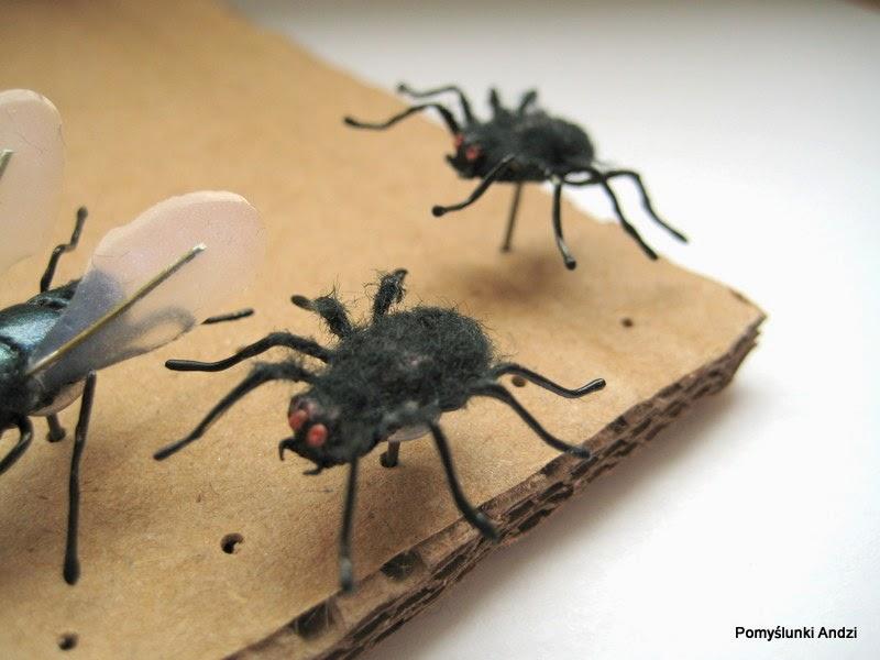 spiders, pajaki,