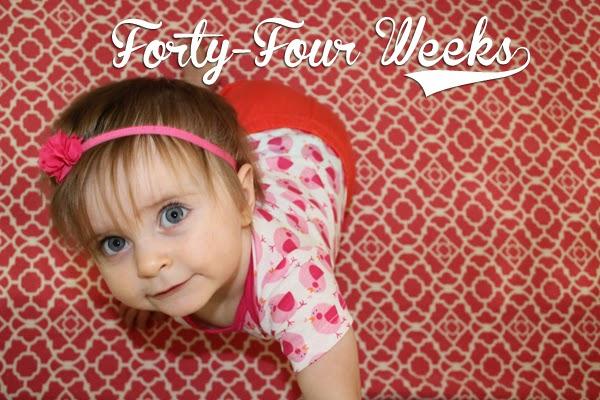 http://meetthegs.blogspot.com/2014/05/lilly-anne-44-weeks.html