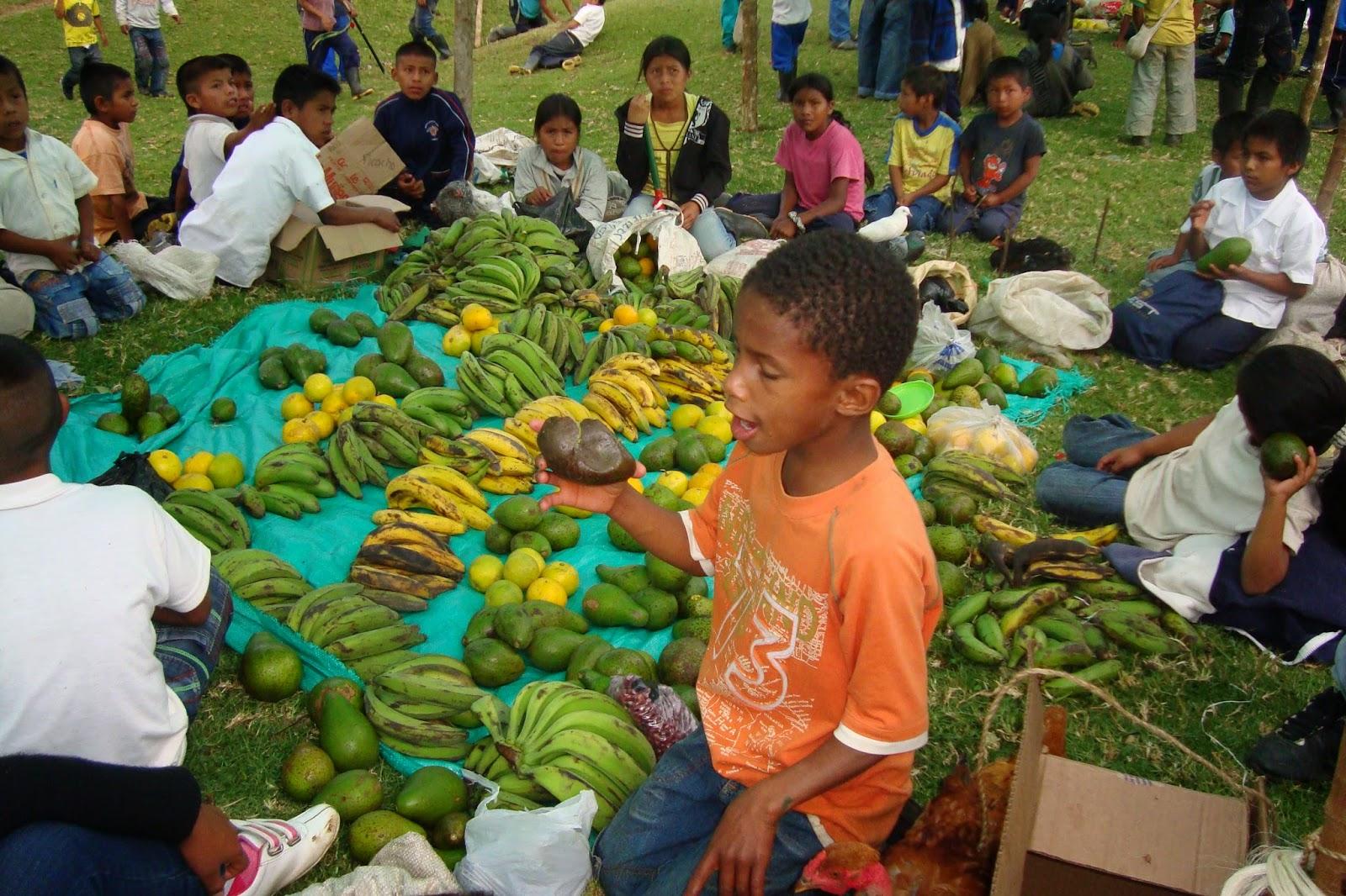 Cauca: Intercambio de productos agropecuarios, artísticos desde los saberes y sabores ancestrales de la región