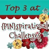 (PIN)spirational