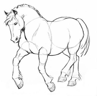Alex alveo18 vocabulary 3 classification - Dessiner cheval ...