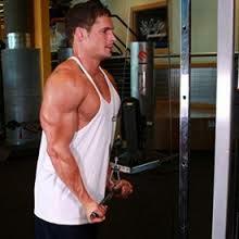Triceps-bodybuilding