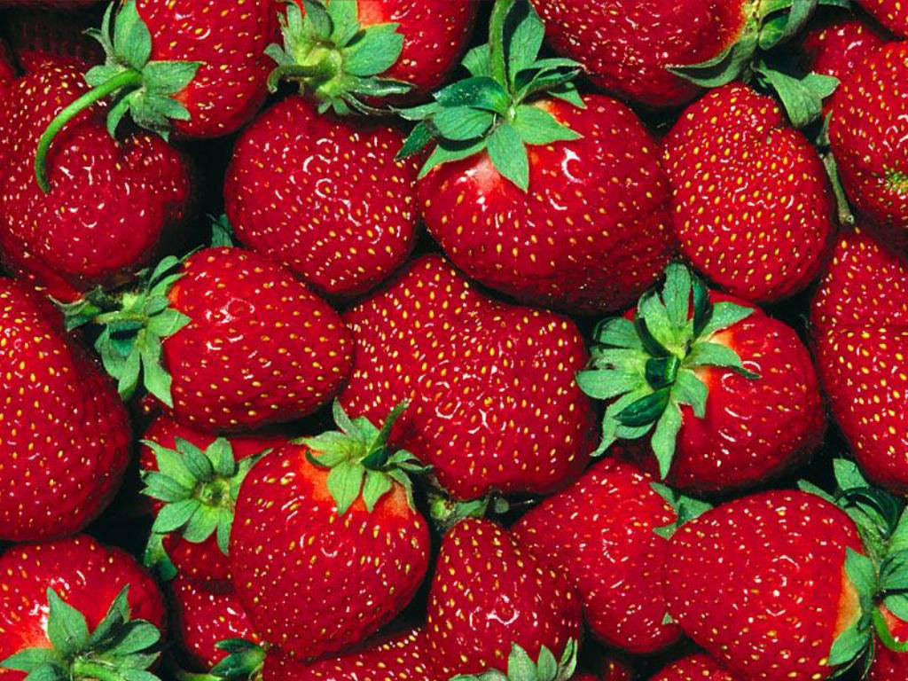 http://2.bp.blogspot.com/-ENsrS0E56Nk/UJSfMyAHa8I/AAAAAAAABBo/WuDJOhR7YJ0/s1600/Strawberry-Wallpaper-fruit-6102247-1024-768.jpg