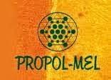 Propol-mel
