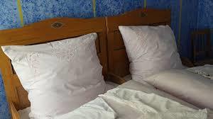 Bettwanzen Und Milben Im Bett Bettwanzen Bisse Erkennen Und Behandeln