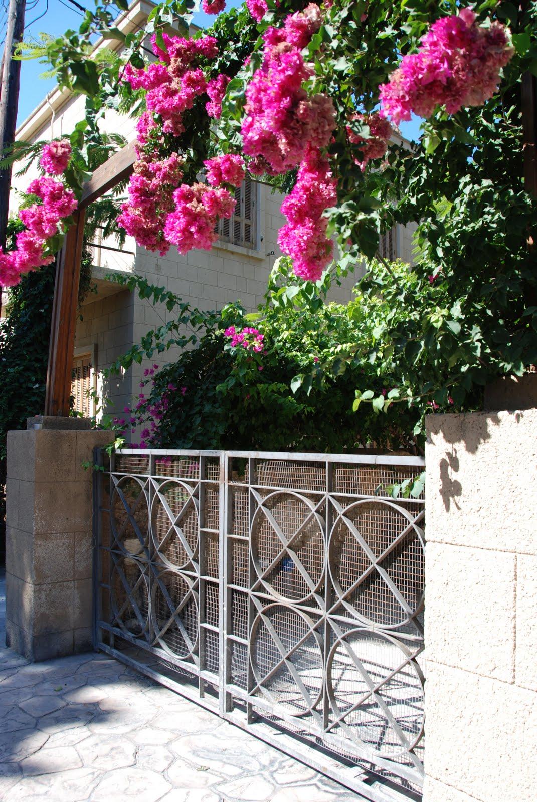 http://2.bp.blogspot.com/-EOCF_9g5ano/Tl9PBfAnRvI/AAAAAAAAAe4/v8N-0ycHN_M/s1600/DSC_0493.jpg