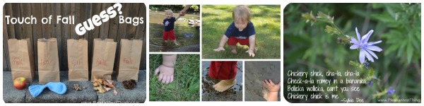 ideas for exploring nature with kids