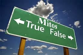fakta dan mitos forex