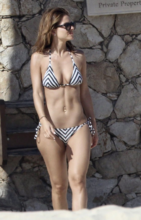 Hottest Celebrity Bikini Bodies Of 2014