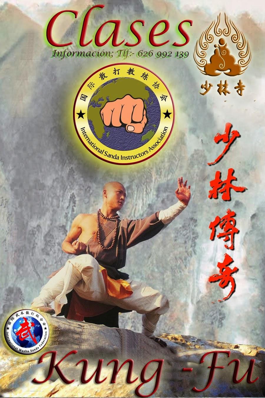 clases de kung fu y sanda 2014