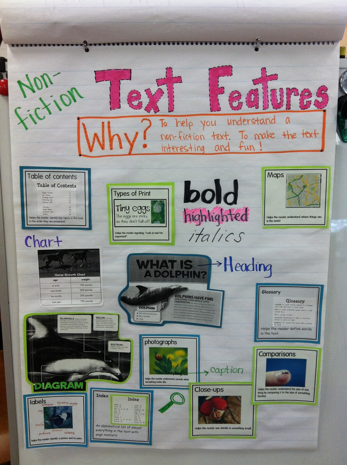Teaching tomorrows leaders a slice of non fiction looking for and discovering text features that are important to non fiction as we found text features we created an anchor chart for the classroom sciox Gallery