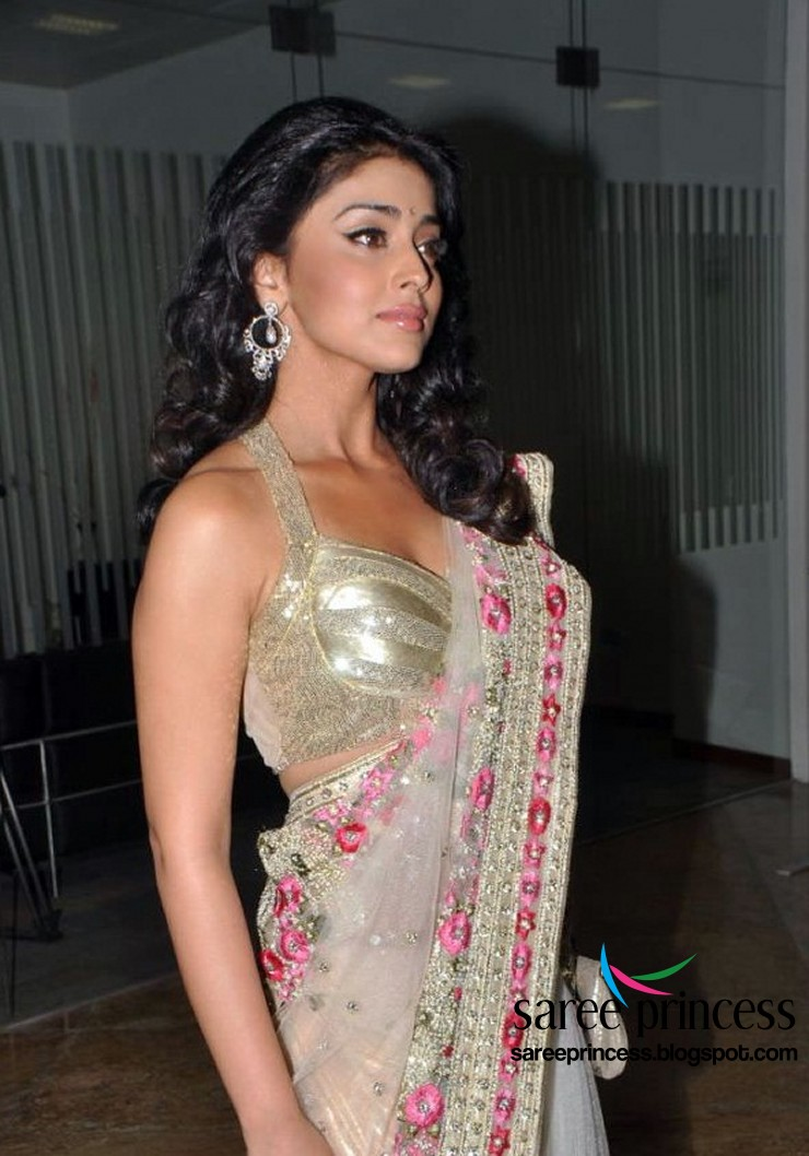 Shriya Saran in Saree1 - Shriya Saran Latest Hot Pics in Saree