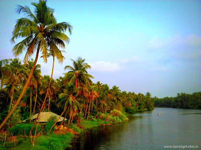 Natural Pictures - Karuvanoor,Thrissur