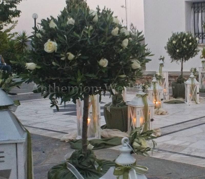 ελιά και τριαντάφυλλα ανθέμιο events