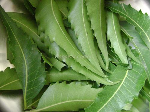 Neem-leaves+Pure-neem-oil.png