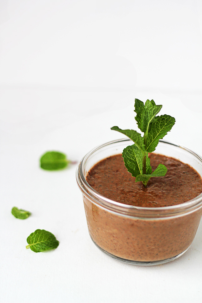 raw chocolate superfood chia pudding