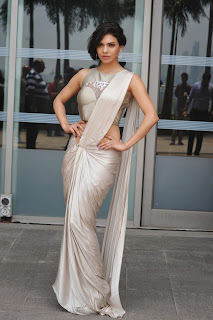 Bollywood Celebrities at Grand Fe of LFW 2014 (3).jpg