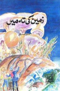 Zameen ki Teh Main by Shakil Siddiqui