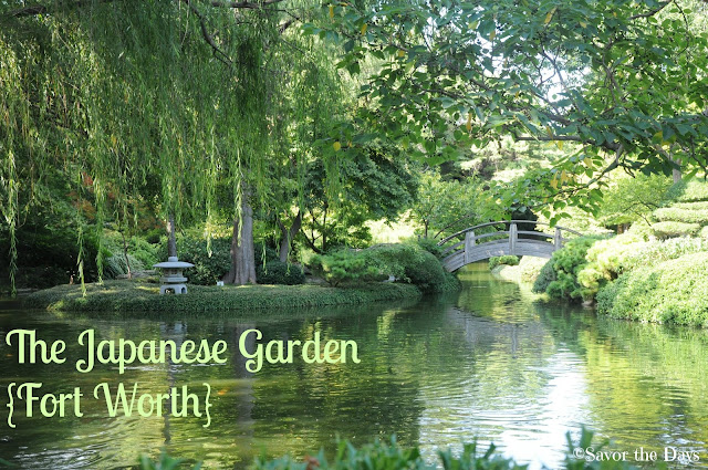 Savor The Days: Discover the Beauty of the Japanese Garden {Fort Worth}