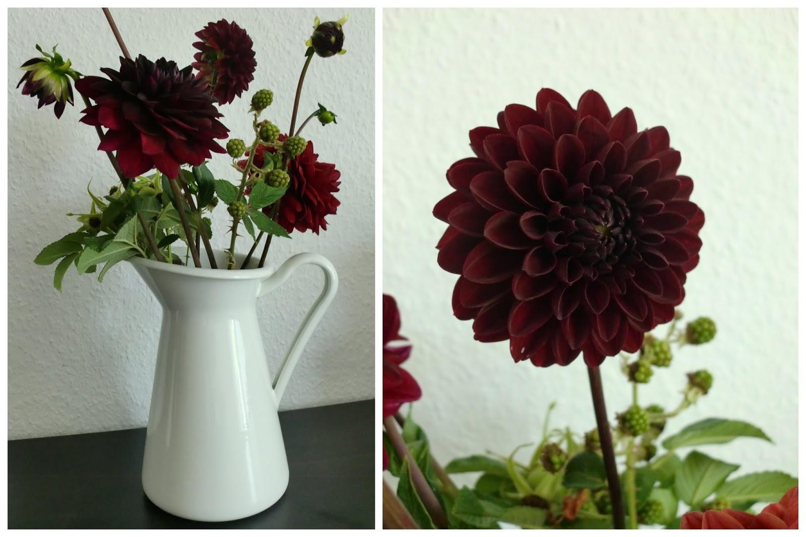 Rote Dahlien und Brombeeren weisse Vase