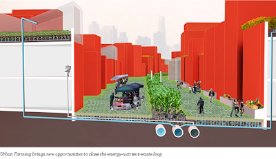 Brooklyn Navy Yard - Energy-Nutrient-Waste Loop