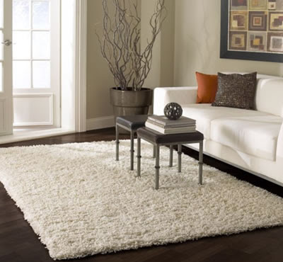 Contemporary Sofa with Rugs USA Collection