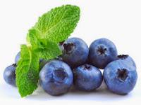 Berbagai Manfaat Buah Blueberry Bagi Kesehatan Kita