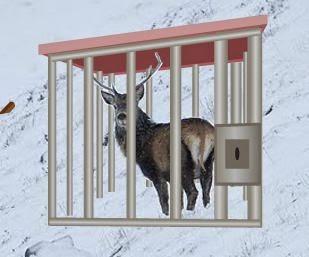 Juegos de escape Escape the Reindeer