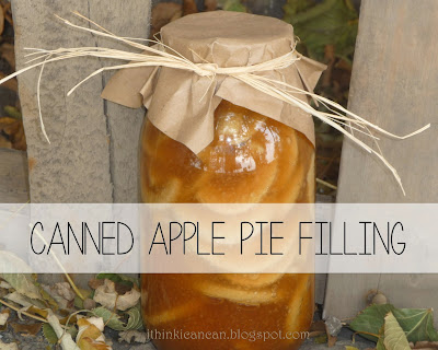 {I Think I Can} Canned Apple Pie Filling