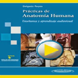 Prácticas de Anatomía Humana Aprendizaje Audiovisual