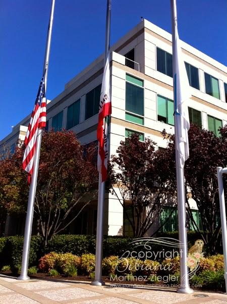 flags half mast death Jobs