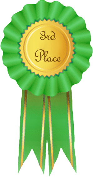 place ribbon clip art 1st 2nd 3rd place ribbons 3rd place ribbon clip ...