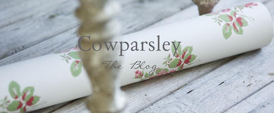 Cowparsley the Blog