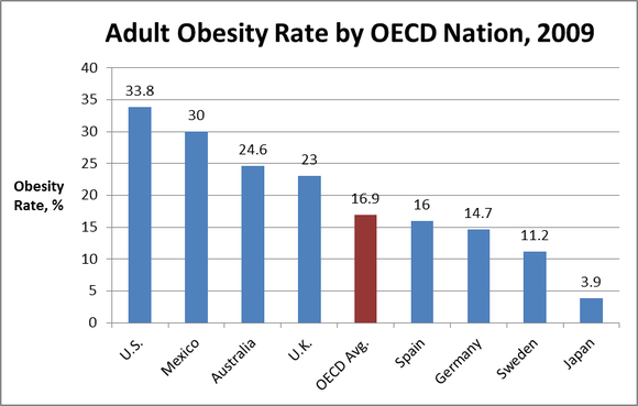 high rates of obesity essay