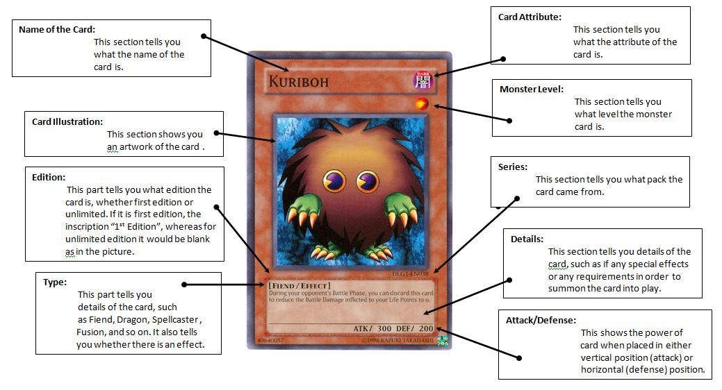 Your One Stop Trading Card Center: Anatomy of a Yu-Gi-Oh! Trading Card