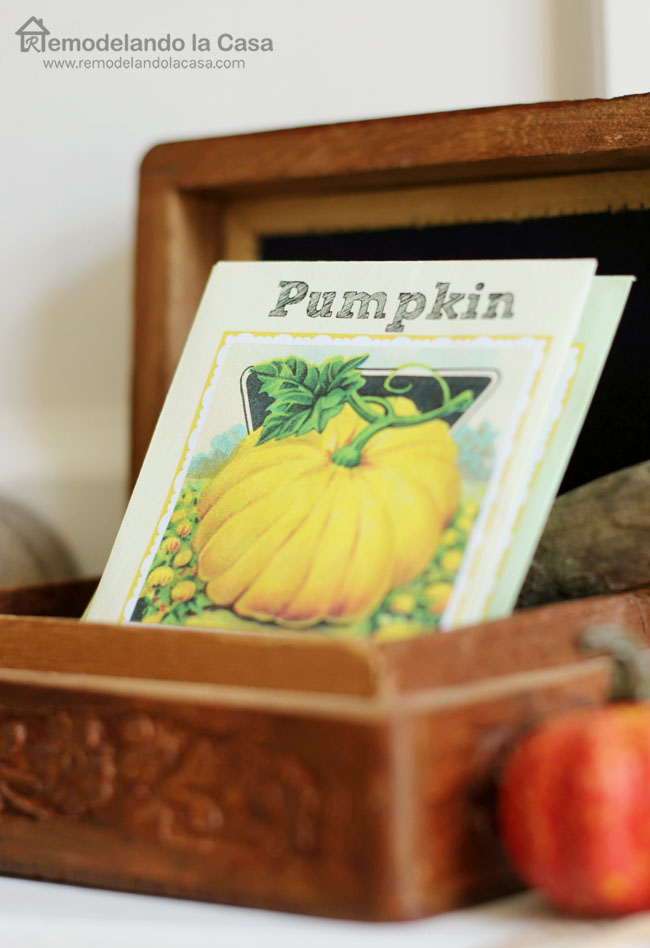 Fall mantel with vintage printer's letterpress drawer tray and pumpkin seeds sign