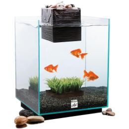 Ryan 39 s pearl the fluval chi feng shui aquarium for Feng shui fish tank