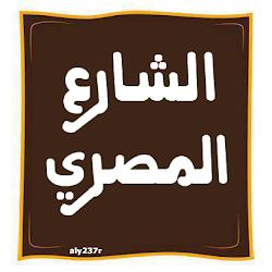 الشارع المصري