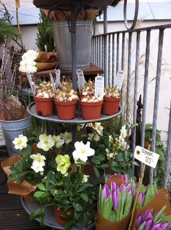 blomsterbutik i Götebor, floramor & krukatös, tips, inspiration, blommor